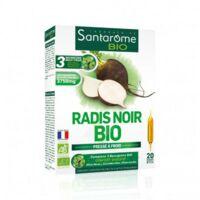 Santarome Bio Radis noir Solution buvable 20 Ampoules/10ml à GRENOBLE