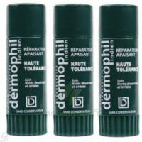 Dermophil indien haute tolérance stick lèvres lot de 2 + 1 offert à GRENOBLE