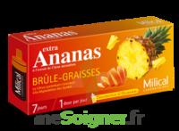 MILICAL ANANAS BRULEUR DE GRAISSE à GRENOBLE