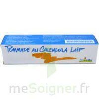 CALENDULA LHF POM T/20G à GRENOBLE