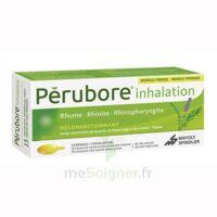 PERUBORE Caps inhalation par vapeur inhalation Plq/15 à GRENOBLE