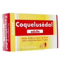 COQUELUSEDAL ADULTES, suppositoire à GRENOBLE