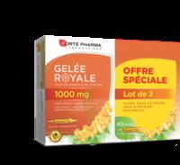 Forte Pharma Gelée royale 1000 mg Solution buvable 2*B/20 Ampoules/10ml à GRENOBLE