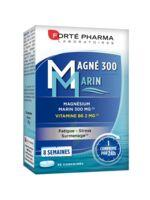 Magné 300 Marin (2 mois) à GRENOBLE